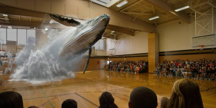 why startups should not chase media buzz - the magic leap startup example